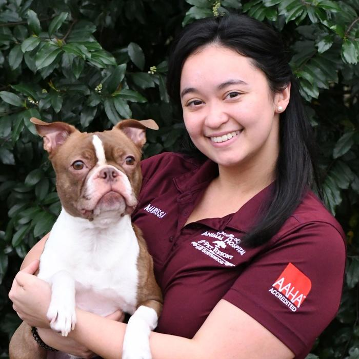 Meet the Team | The Animal Hospital & Pet Resort at Southwood